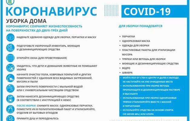 Стаття біолога Кирила Пиршева «Чистота вдома в умовах епідемії»